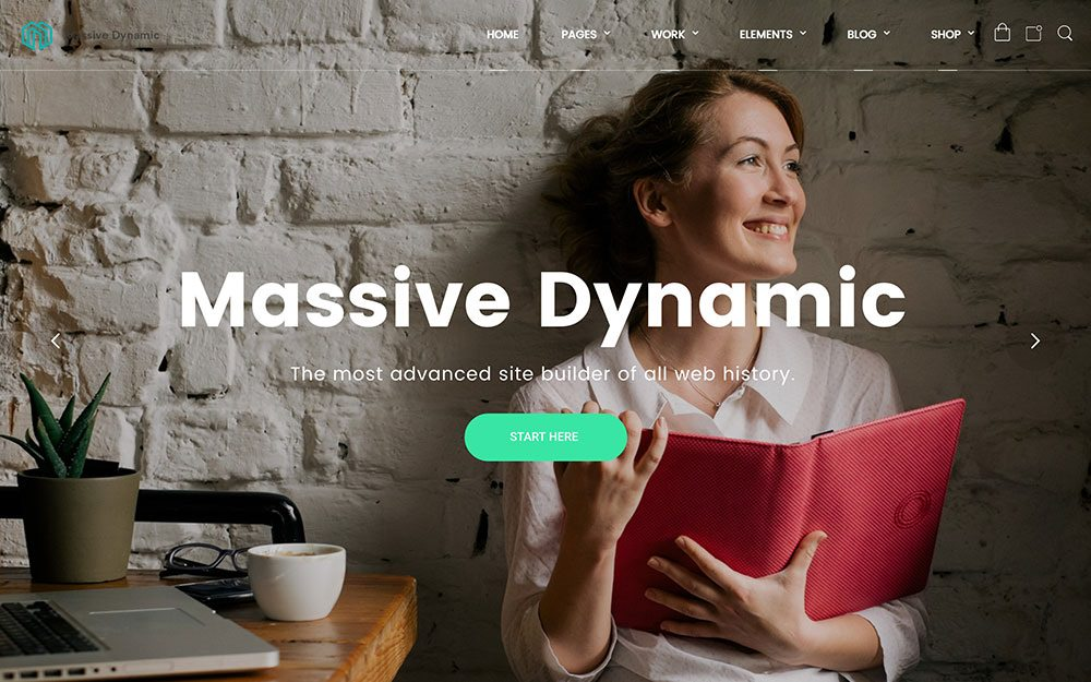 Landing Page. WordPress Massive Dynamic