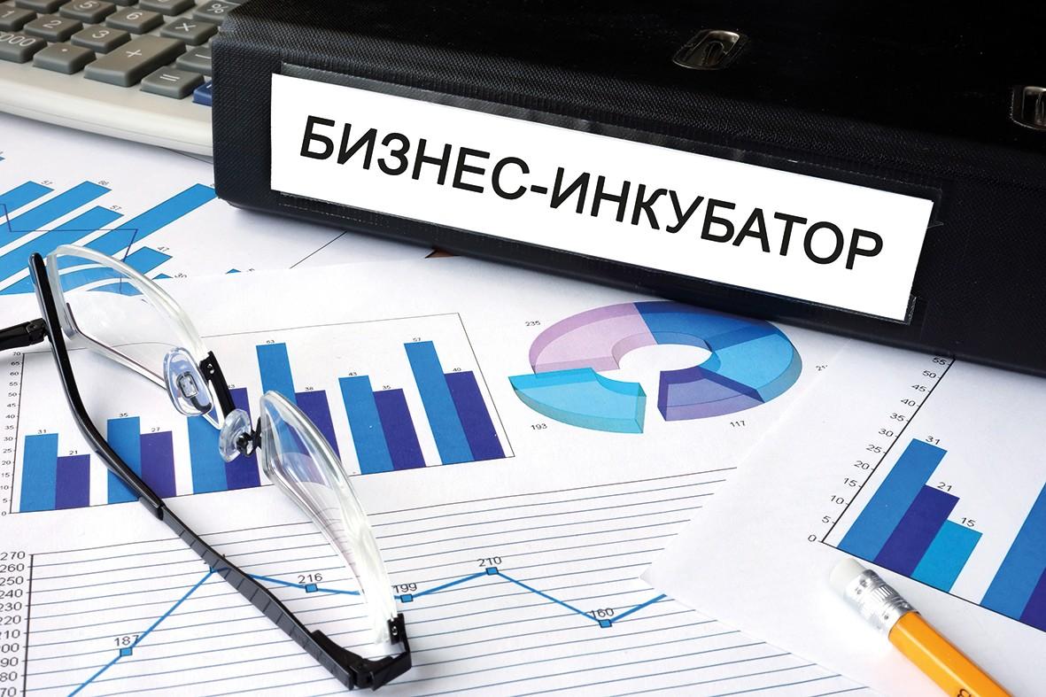 Бизнес-инкубатор — понятие определения и разновидности
