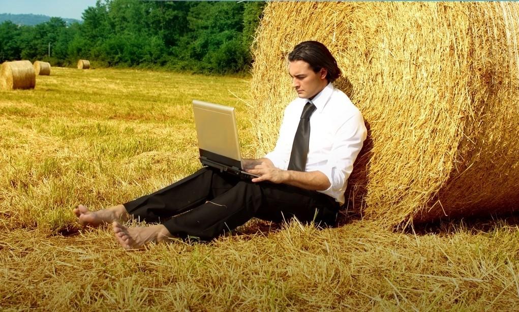 Бизнес в деревне — интересные идеи с нуля и открытия без денег