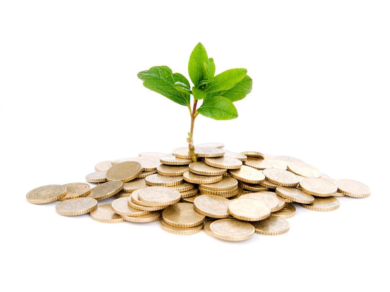 Малое предпринимательство — категории субъектов и их критерии